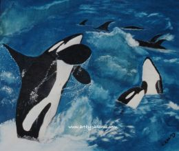 Orcas at Play (size: 16 x 20)
