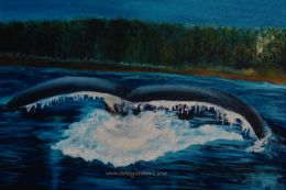 Whale Tail (Panoramic Gallery Wrapped Canvas Format: 24x16)